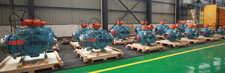 Different Diameter Pig Valve